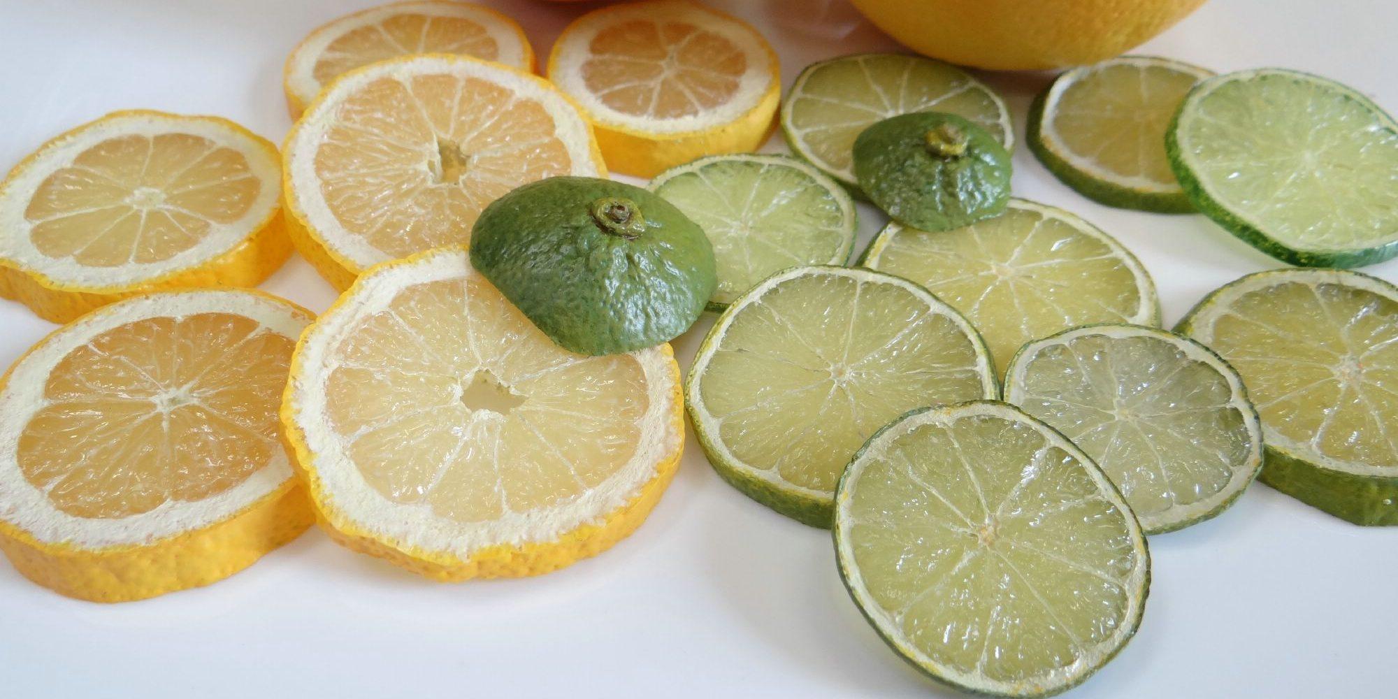 fausses rondelles de citron déco factices alimentaires en résine. Citrons jaune et vert et pamplemousse