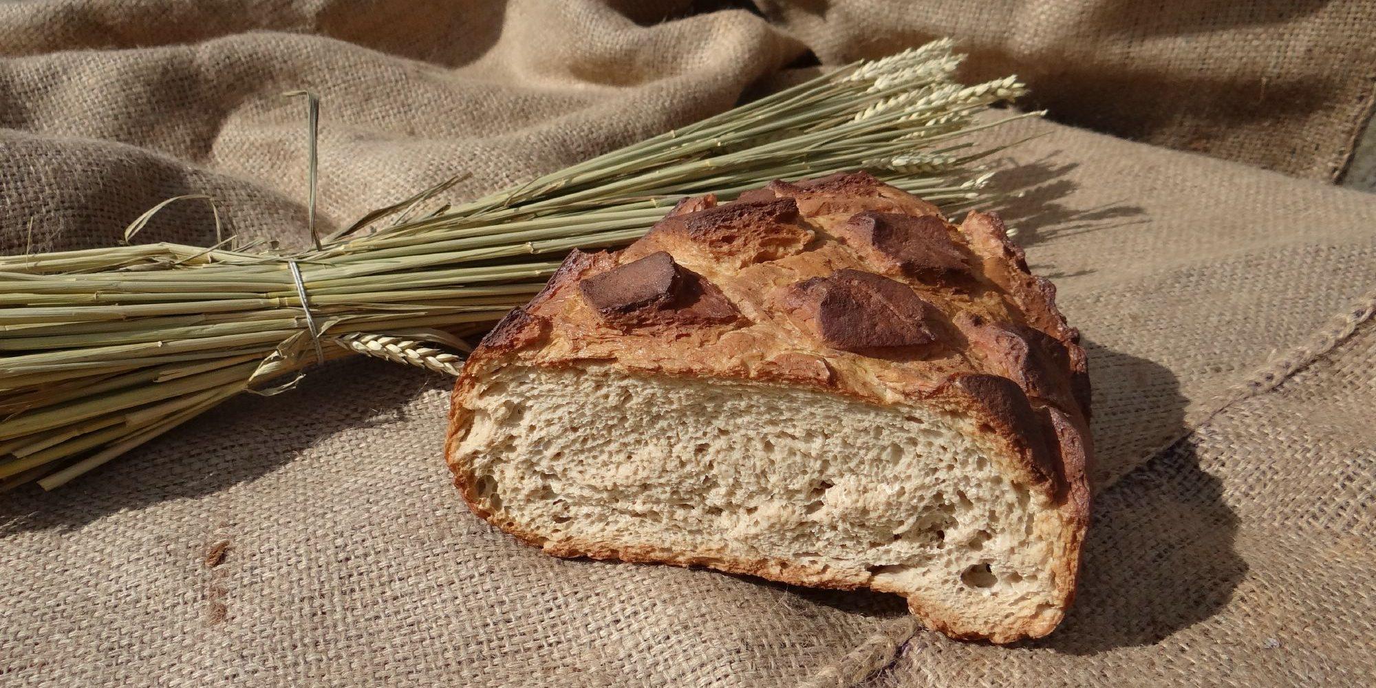miche de pain médiévale factice pour expositions