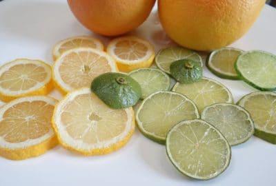 création de fruits factices en résine