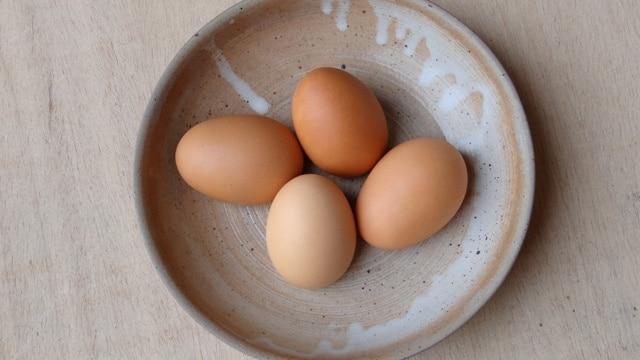 œufs factices en résine