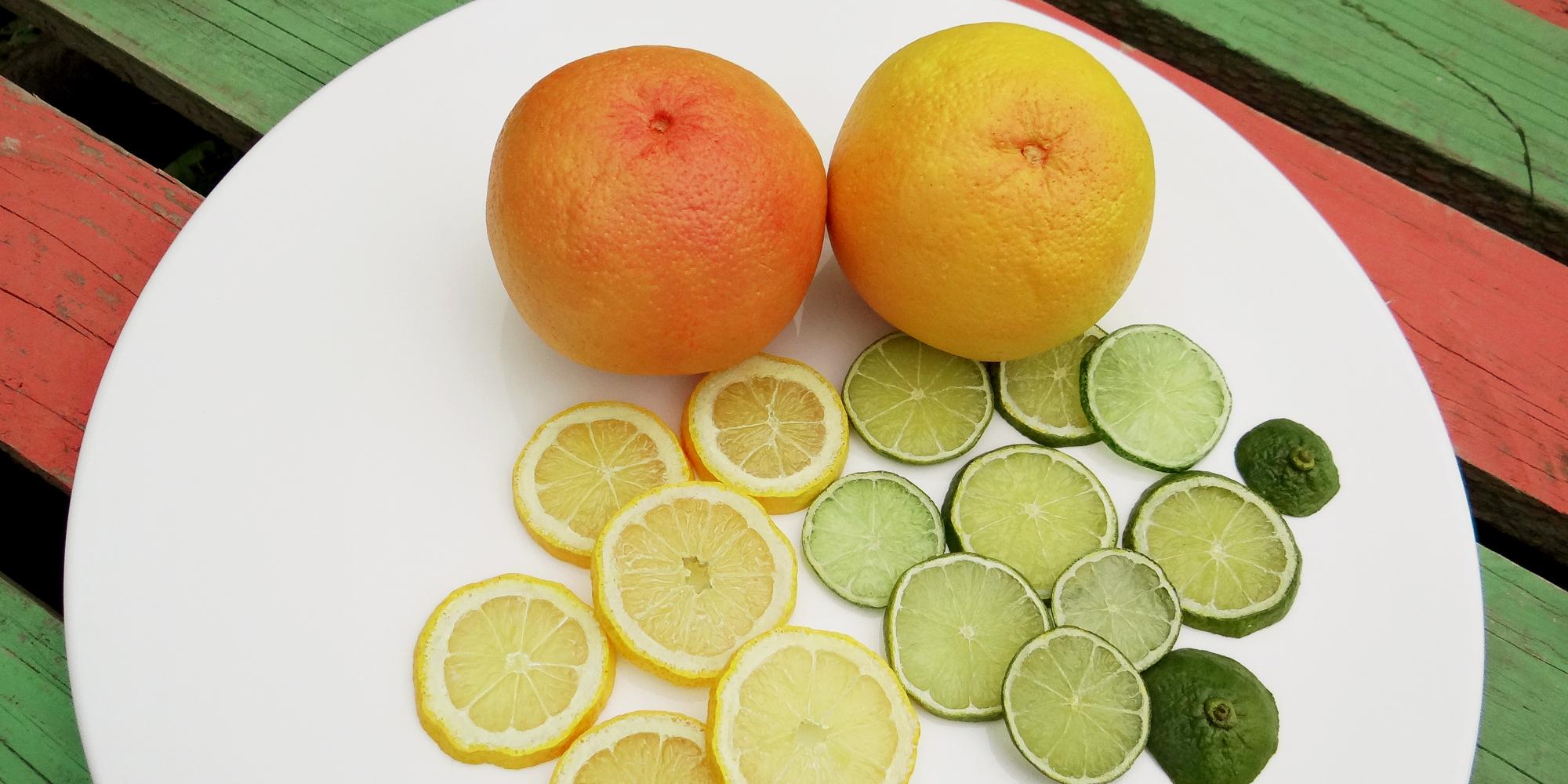 pamplemousses et rondelles d'agrumes - citrons et citrons verts factices