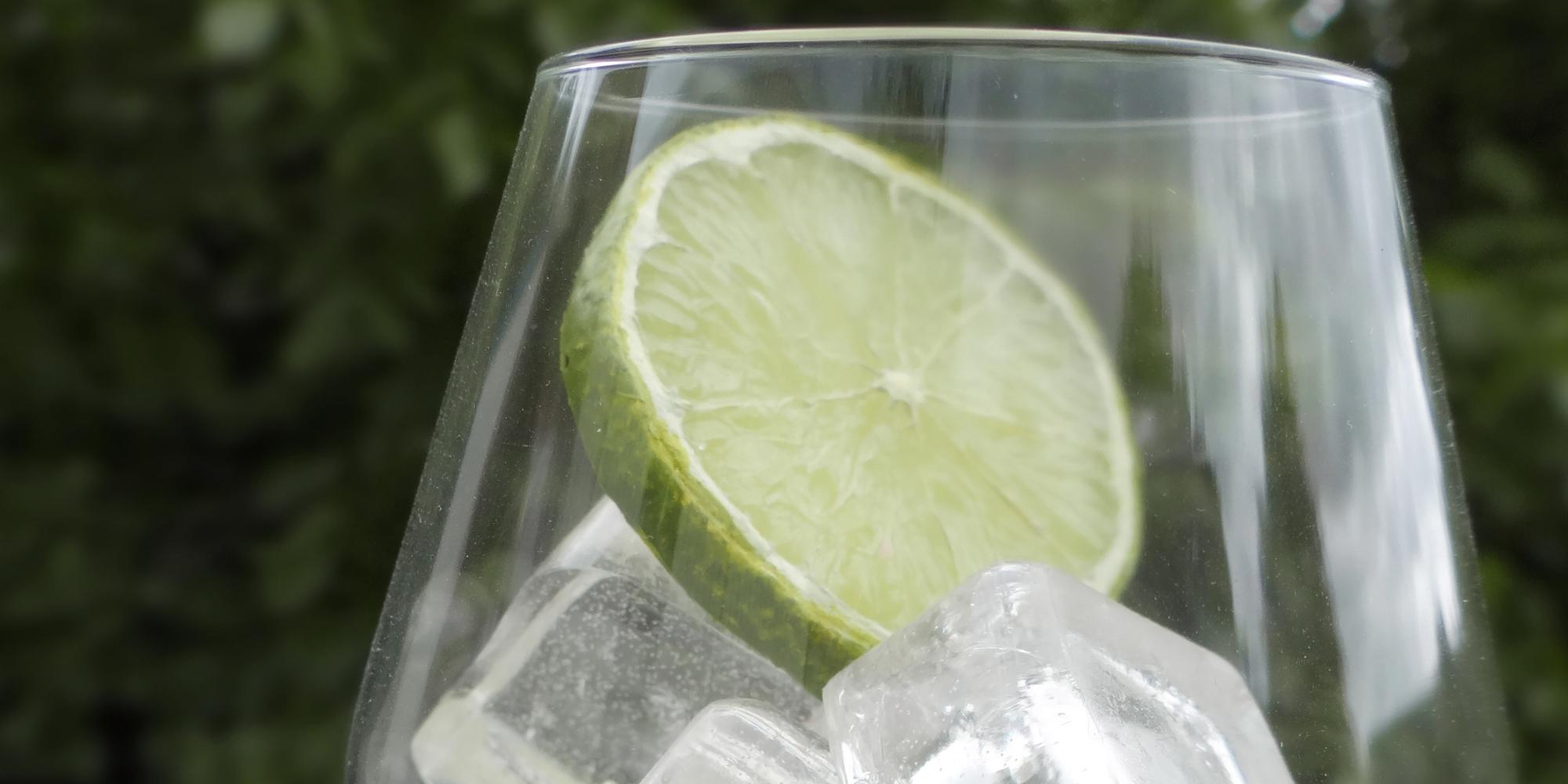fausse rondelle de citron vert et glaçons factices