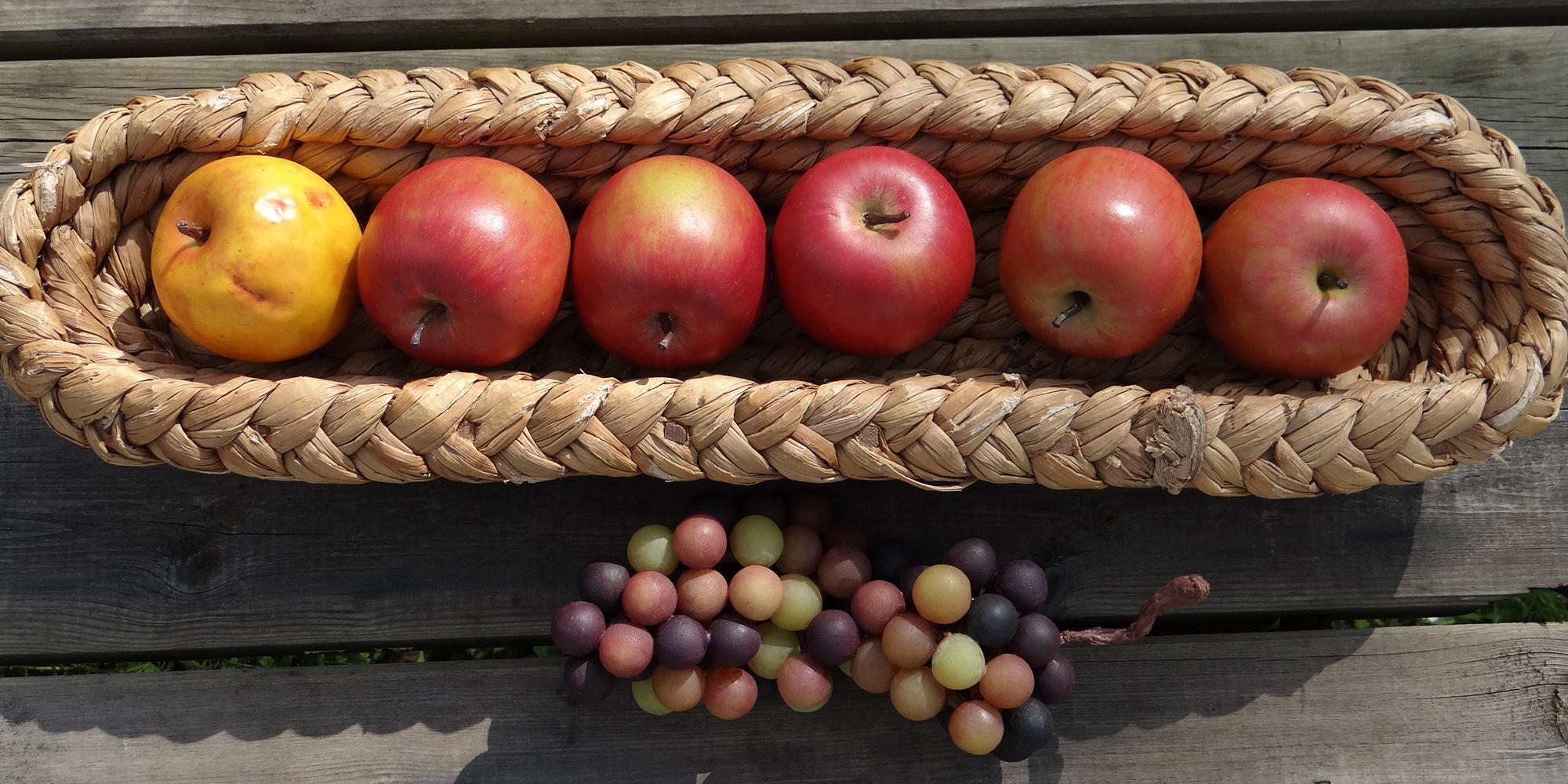 pommes et raisin verjus factices en résine
