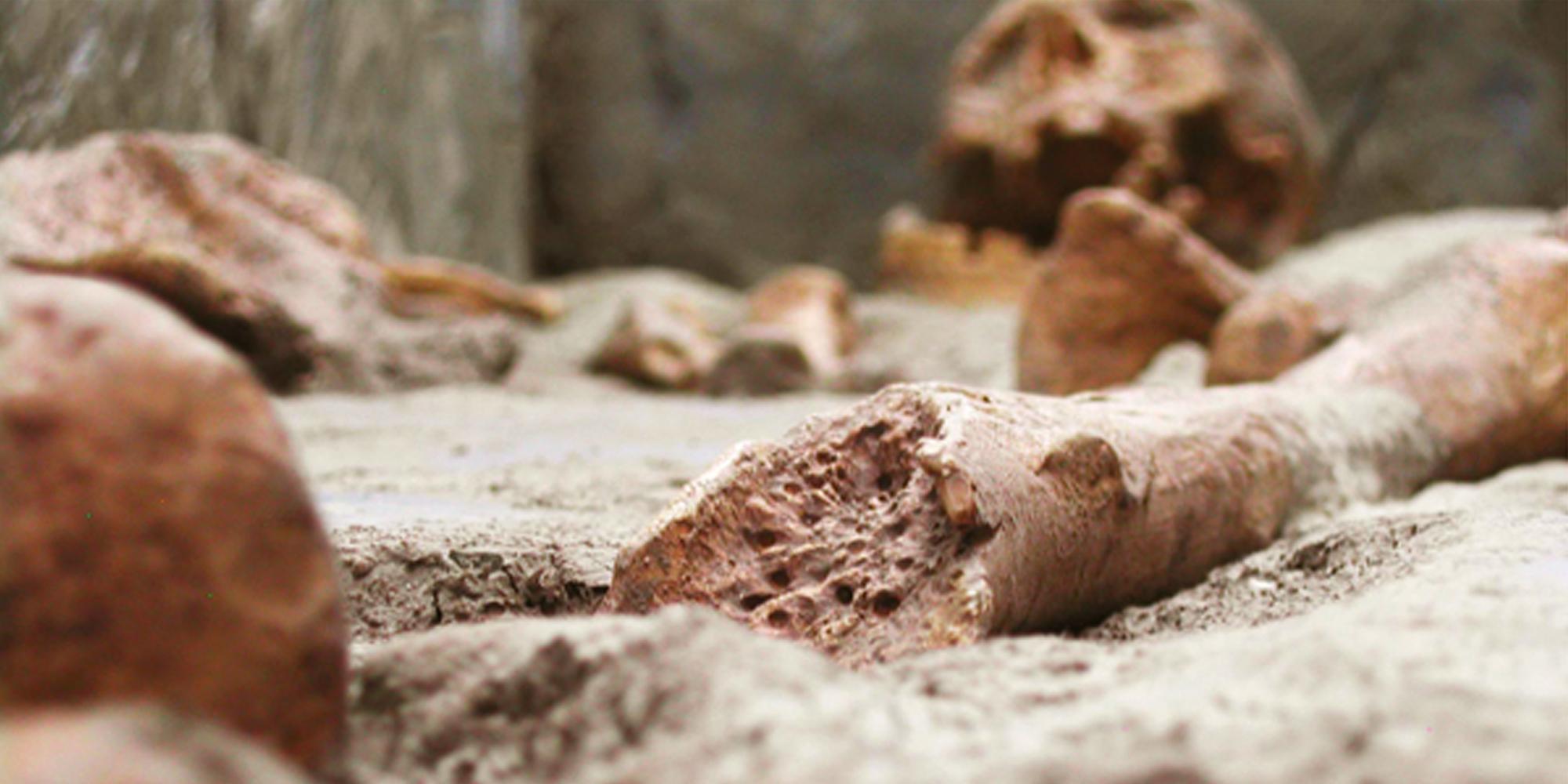 création d'ossements factices et fragments d'os humains factices en résine