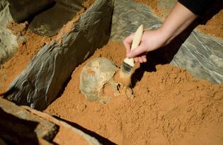 l'atelier COBALT fx a créé un fac simile en resine de tombe mérovingienne pour la collection permanente du musée de Bretagne