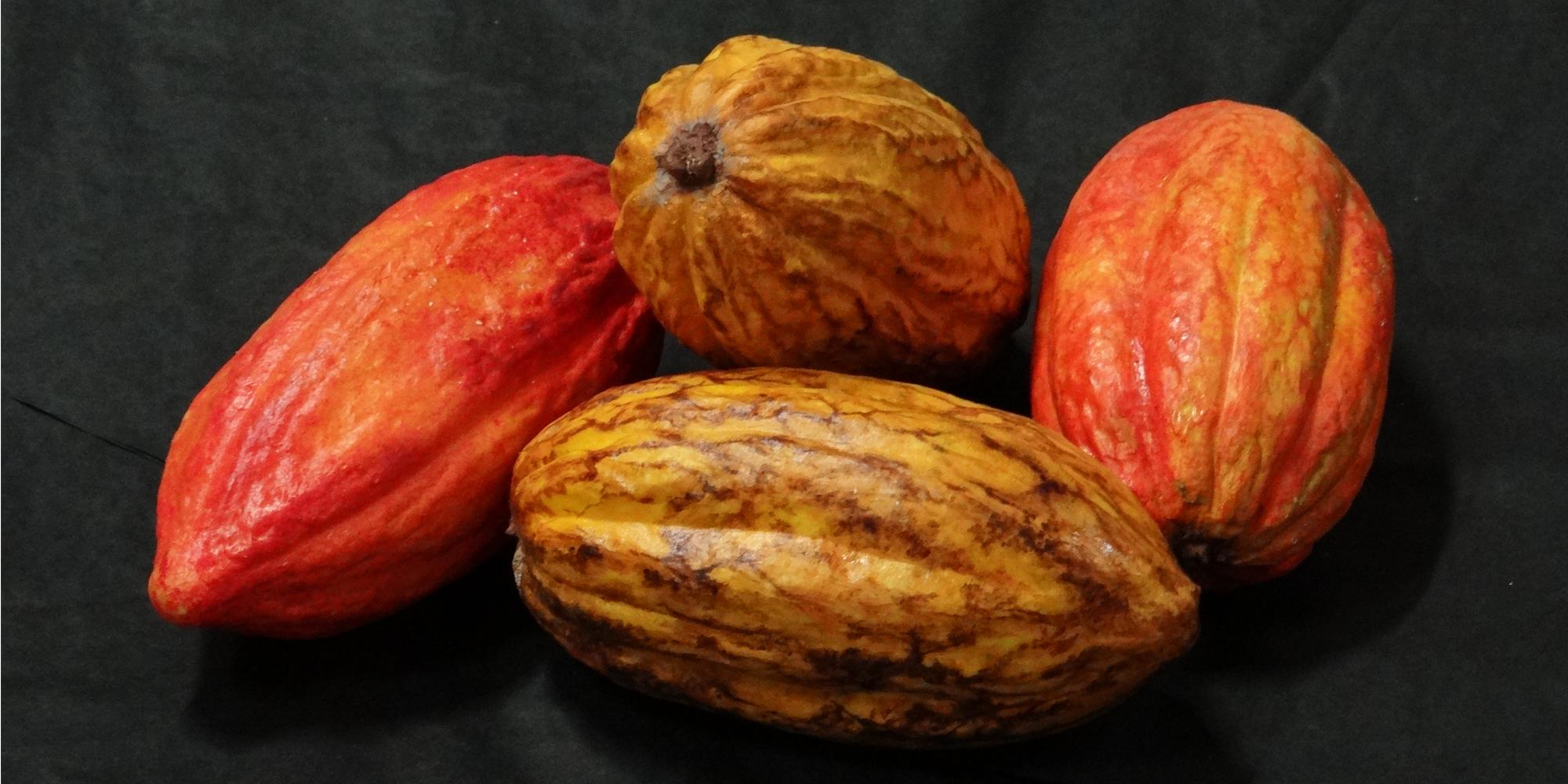 cabosses de cacao factices en résine pour décor